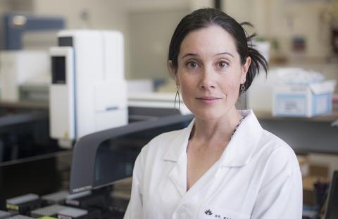Dr. Zabrina Brumme, Director, BC-CfE Laboratory
